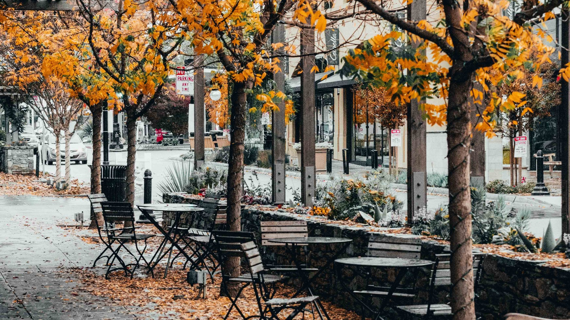 Fall scene at an empty cafe; Photo by Ian Mackey on Unsplash